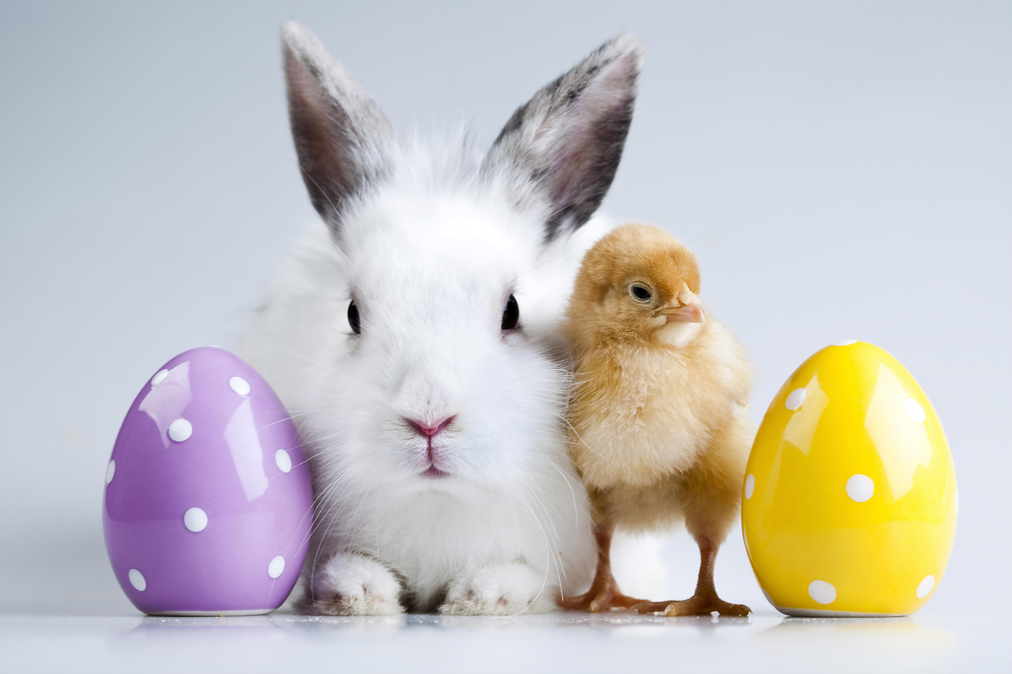 Rechtzeitig an Ostern denken!