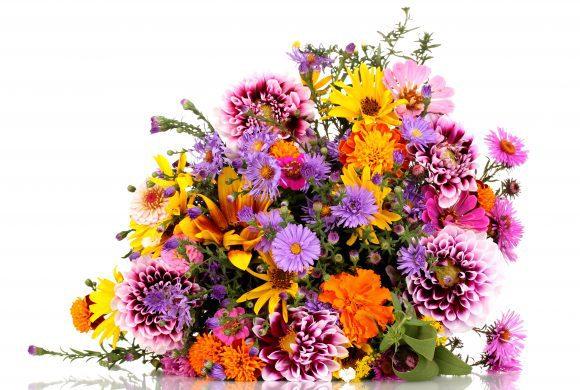 Mutti liebt Blumen